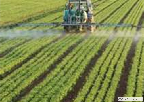 Health Destroying Chemical Farming